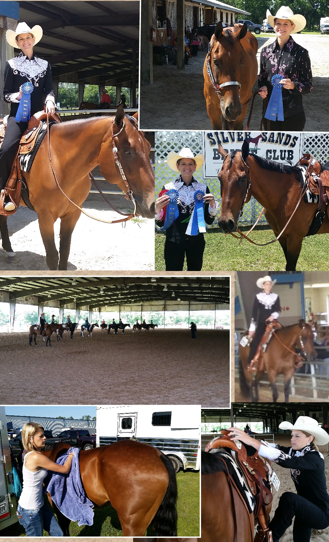 Lindsay Brim - Horse Collage